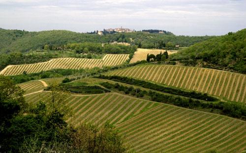 Il Borgo di Selvole, tra Radda e Gaiole